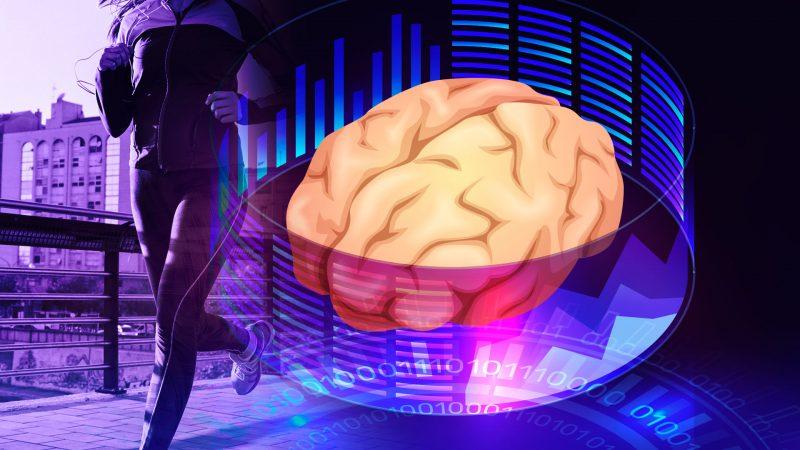 5 elementos fundamentais para o seu cérebro funcionar adequadamente